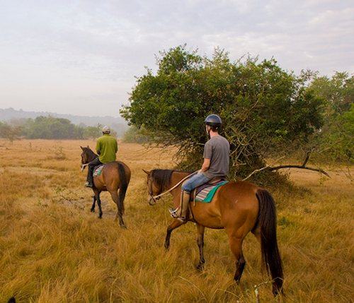 Horseback Riding safaris